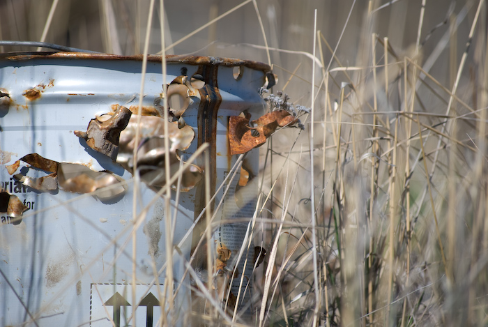 rusted can with bullet holes through grass