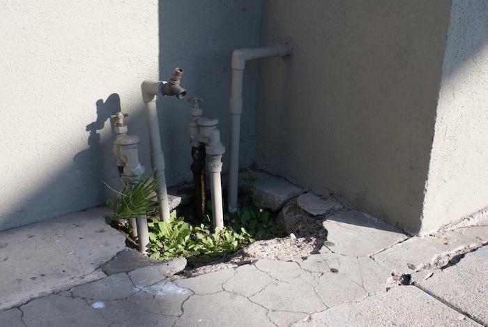 pipes in broken sidewalk corner with greenery
