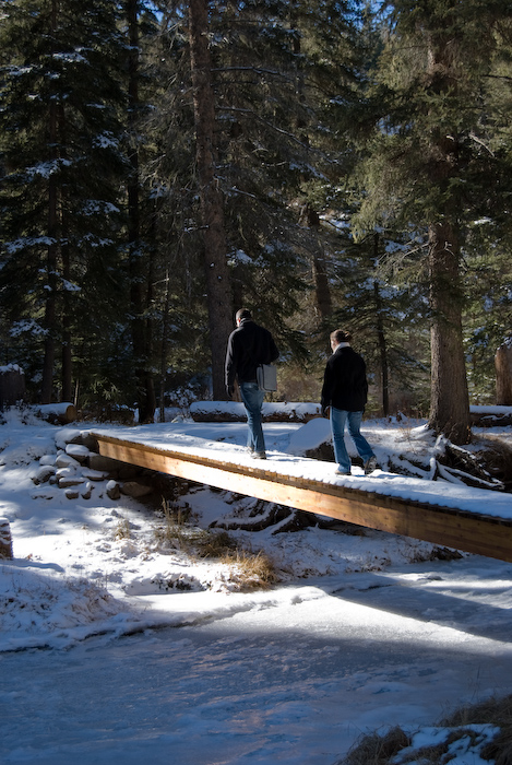 pedestrian bridge with hikers in forest
