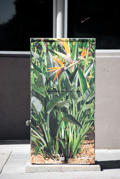 utility box with locks and prints of foliage