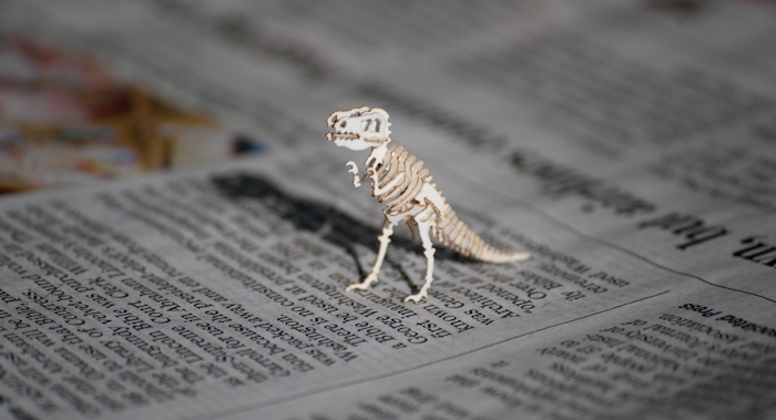 Tinysaur on newspaper in sunlight