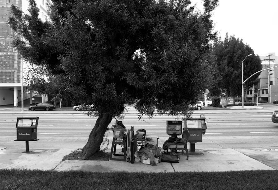 tree with belongings on sidewalk