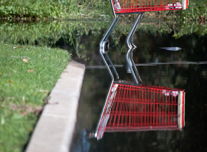 grocery cart in water: reflection and curb
