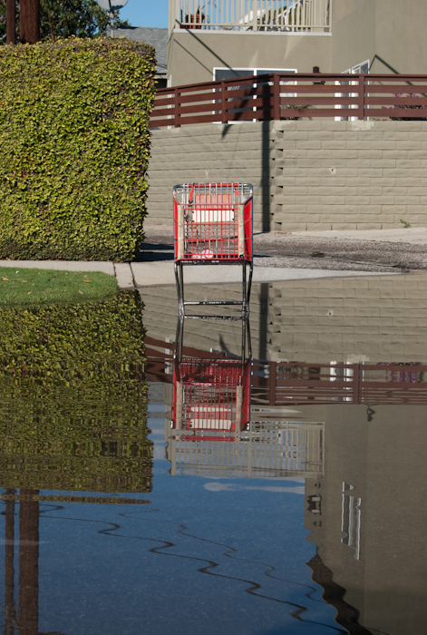 grocery cart in water: front with ripples
