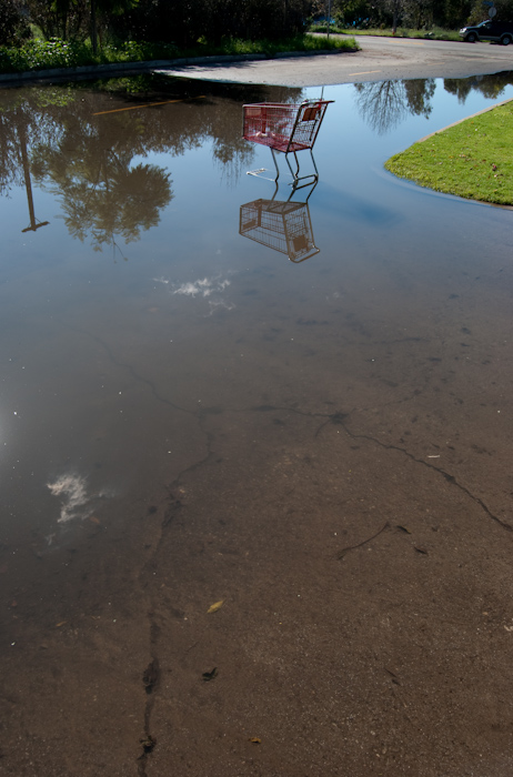 grocery cart in water: with pavement and reflected clouds