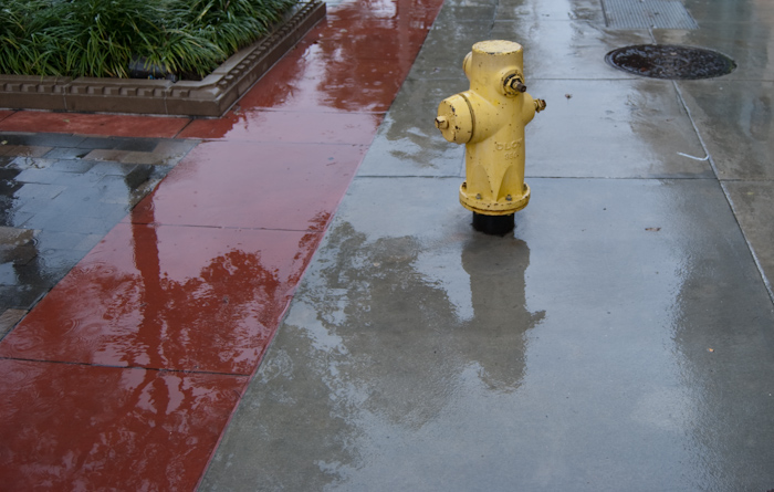 fire hydrant and utility covers in wet sidewalk