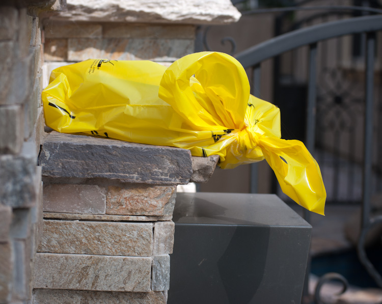 phone book in bag on embedded mailbox