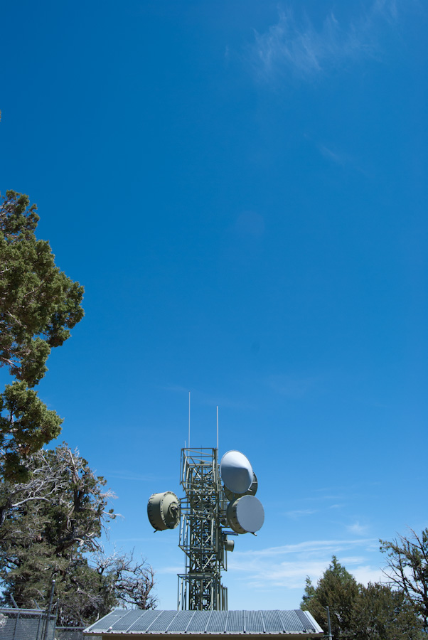 antennas and roof with trees and sky