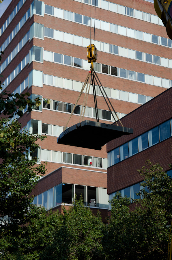 counterweight being lifted above trees