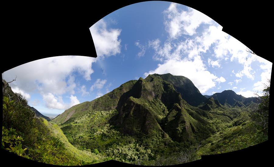 mountainside panorama