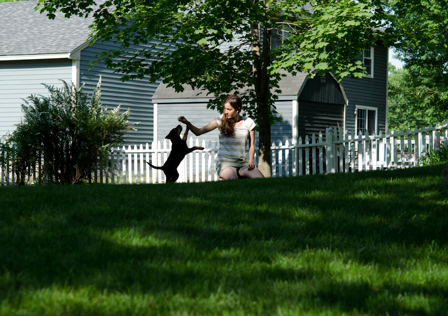 puppy and woman on grass