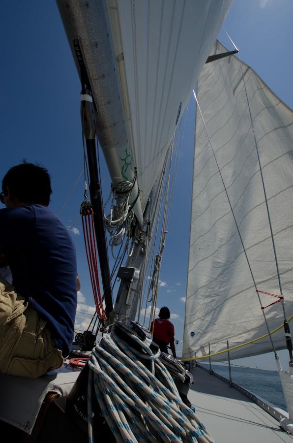 sails, passenger, and crewmember