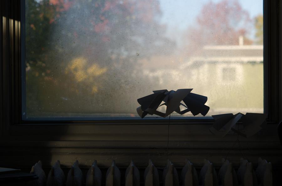 in dark window