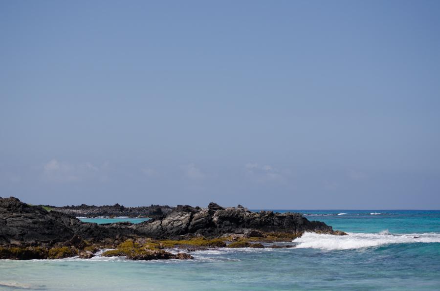 rocks in surf