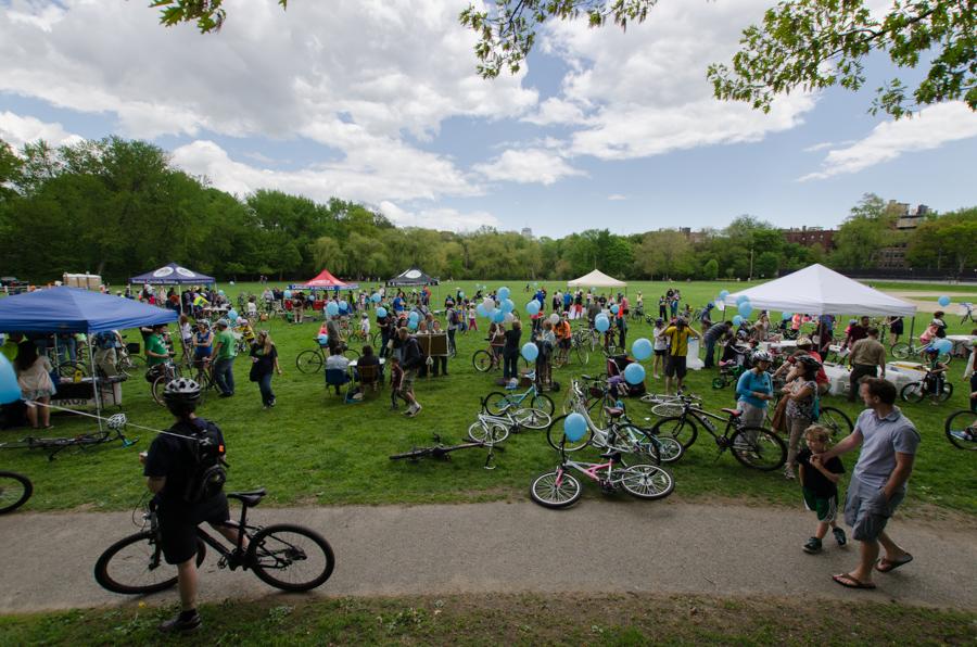 crowd in field