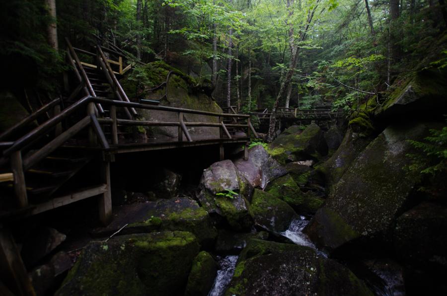 stream and boardwalks