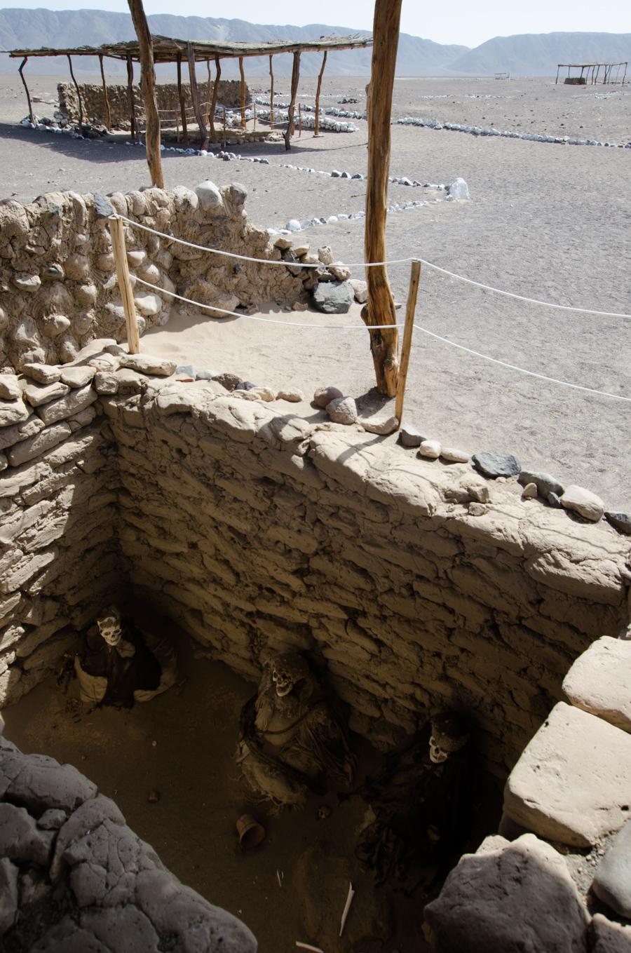 mummies in excavated tomb